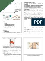 Administración de Medicamentos Por via Intramuscular Diptico
