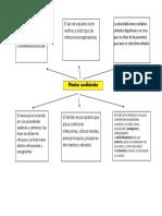 Mapaconceptual-planta y Medicina