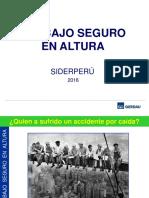 TrabajoSeguroEnAltura.pdf