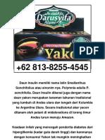 Jual, +62 813-8255-4545, Teh Yakon Darusyifa Termurah