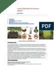 Guia para elaboracion de insectos