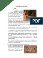 Tuneles - Septima Unidad (1)