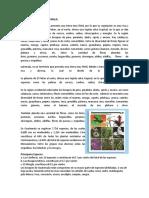 Flora y Fauna de Guatemalaflora