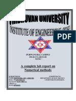 numericalmethods.pdf