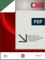 Maestria en Neuropsicologia, Libros Disponibles en Biblioteca