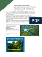 La Importancia de Las Áreas Protegidas y Reservas Naturales