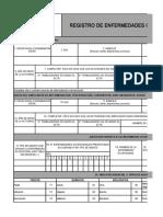 06 Registro de enfermadades Ocupacionales.xlsx