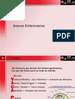 embriologia - anexos embrionarios