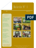 Centro Ideas - Boletin Nº 01