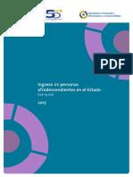 Informe Afrodescendientes Completo 2017