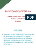 PROYECTO LECTOESCRITURA