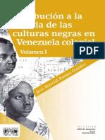 Culturas negras 1.pdf