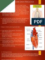 Struktur Anatomi Dan Fisiologi