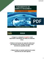 Aula 08_Agua e Solubilidade(1)