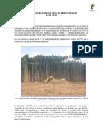Eucaliptos Brasilenos de Alta Productividad en El Peru.2012..Doc