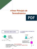 Tema 1-Primer Principio1