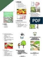 Triptico de Controlador Ecologico de Plagas y Enfermedades de Huertos Familiares_2014