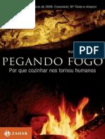 Pegando Fogo - Por Que Cozinhar Nos Tornou Humanos - Richard Wragham