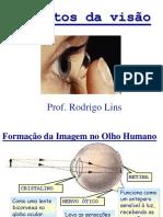 Defeitos Da Visao e Instrumentos Opticos para o Enem