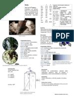 Andalusita.pdf