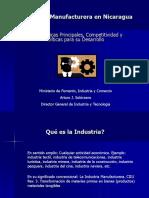La Industria Manufacturera en Nicaragua 1995-2010