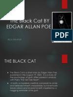 black cat (summary)