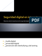 Seguridad digital en internet.pptx