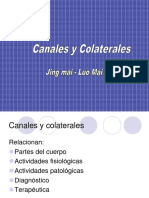 Canales y Colaterales (1)