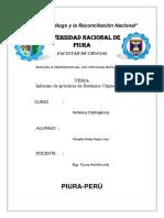 Morales Prieto Pedro Ivan Informe de Criptogamica