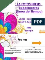 La Fotosintesis.. Formato PDF