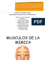 Músculos de La Mimica
