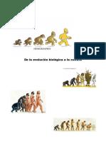 Actividades Tema Evolución