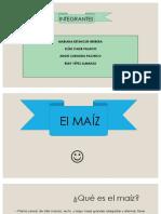 EL MAÍZ-1.pdf