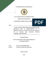 Proyecto de agro ecologpdf.pdf