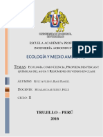 TEORÍA-DEL-CAOS imprimir.docx