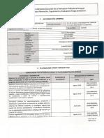 Formato planeacion , seguimiento y evalaucion etapa productiva.pdf