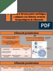 inflamacion-granulomatosa