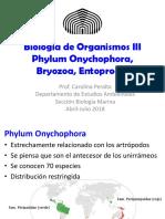 BOIII_OnychophoraBryozoaBrachiopoda