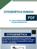 Historia de La Citogenética Humana