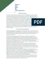 cliclos Biogeoquimicos.doc