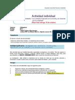 Guía y  rúbrica del Trabajo individual.pdf