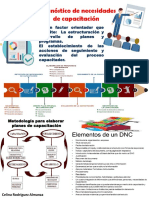 Infografía DNC