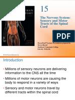 neuron tract.pdf