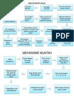 MEKANISME MUAL MUNTAH