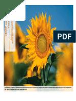 CISSP_Summary_V1.1.pdf