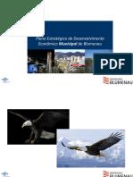 apresentacao_pedem.pdf