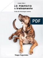 Como Ter o Cão Perfeito Sem Treinamento - Tiago Fagundes (Auphaville)