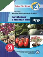 Agribisnis Tanaman Buah Xi