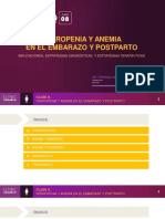 Curso01 Hierro Gineco Clase06 ESPANOL
