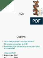 adn_prezentare